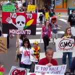 The May March Against Monsanto grew into a state ballot initiative to require the labeling of genetically modified foods (GMOs). This was one of many examples where grassroots activism surged for positive community change. (photo by Mark Lewis)